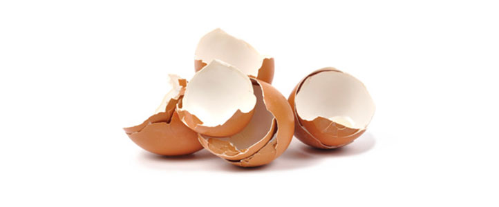 beneficios de la cáscara de huevo