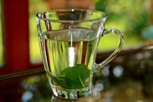adiós a la gastritis con agua de hierbabuena