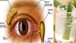 método para curar los problemas de la vista