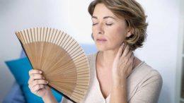 Cuánto Tiempo Dura La Menopausia