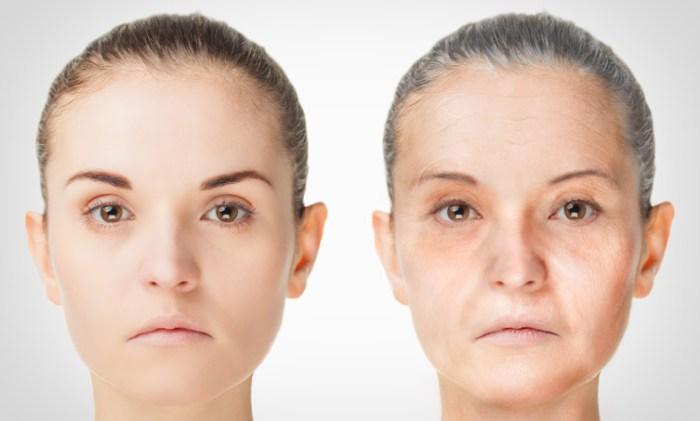 plantas que prometen regenerar y rejuvenecer tu piel