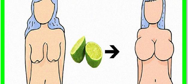 semilla de fenogreco para levantar senos