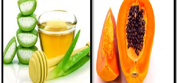 limpiar el organismo con lechosa, aloe vera y miel