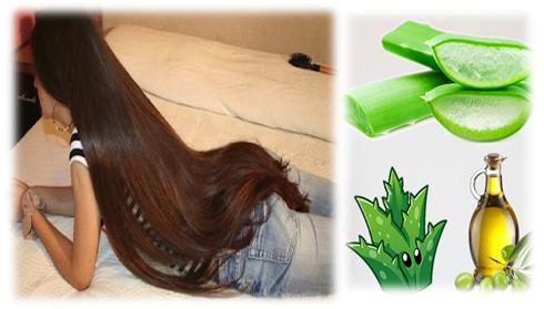 beneficios-del-aloe-vera-para-el-cabello