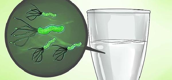 remedios-para-eliminar-Helicobacter-pylori