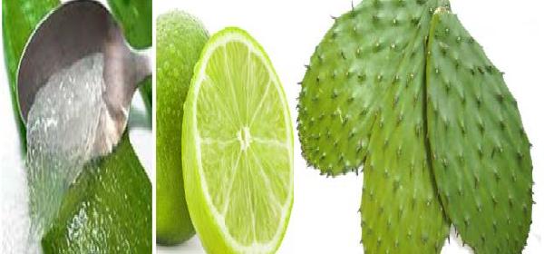 batido-de-aloe-y-cactus