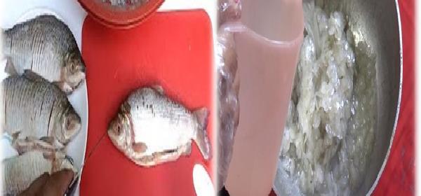 escama-de-pescado-para-la-artritis