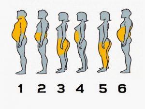 Qué parte de tu cuerpo engorda más