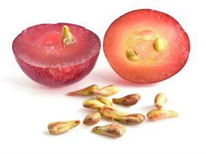 semilla-de-uva-es-mas-eficiente-que-la-quimioterapia