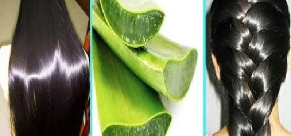 receta-de-aloe-vera-con-azucar-para-el-cabello