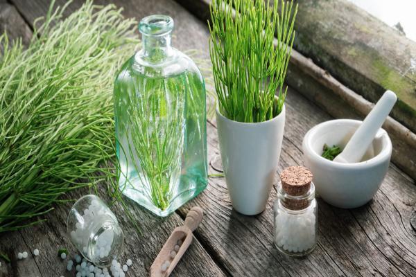 Elimina las varices con remedios naturales